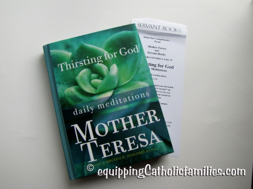Mother Teresa Book